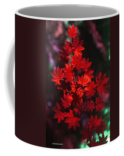 Autumn Colors Early Coffee Mug featuring the photograph Autumn Colors Early by Tom Janca