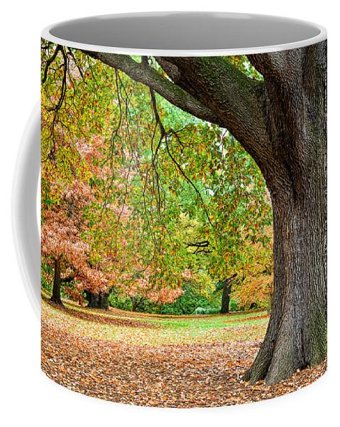 Autumn Coffee Mug featuring the photograph Autumn by Dave Bowman