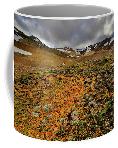 Horizontal Coffee Mug featuring the photograph Autumn Foliage And Snowcapped Mountain by Johnathan Ampersand Esper