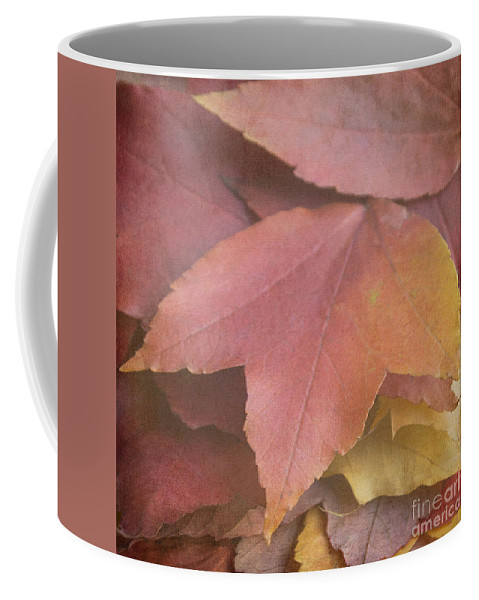 Autumn Coffee Mug featuring the photograph Autumn In Textures by Arlene Carmel