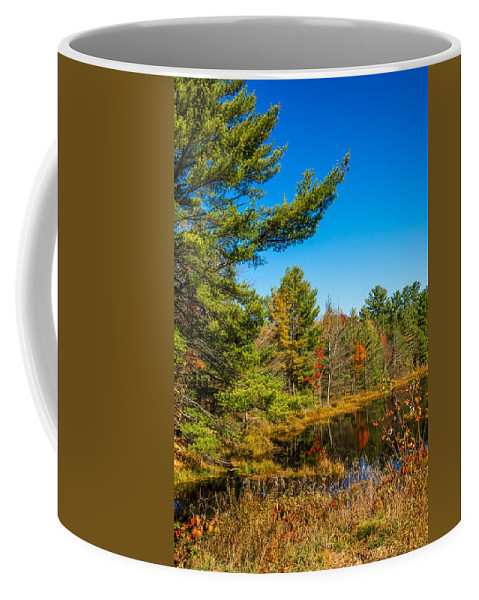 Steve Harrington Coffee Mug featuring the photograph Autumn Lake 4 by Steve Harrington