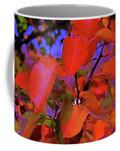 Autumn Coffee Mug featuring the photograph Autumn Magic 1 by First Star Art
