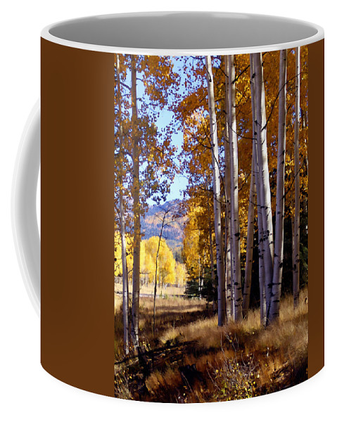Trees Coffee Mug featuring the photograph Autumn Paint Chama New Mexico by Kurt Van Wagner