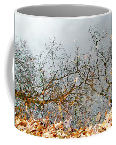 Reflections Coffee Mug featuring the photograph Autumn Reflections On Alloway Lake Nj by Mother Nature