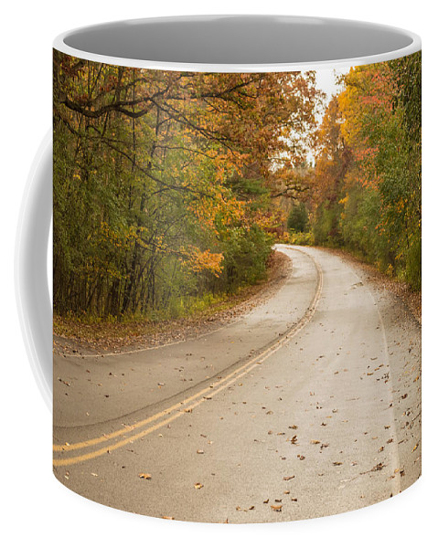 Autumn Coffee Mug featuring the photograph Autumn Road II by Ray Sheley