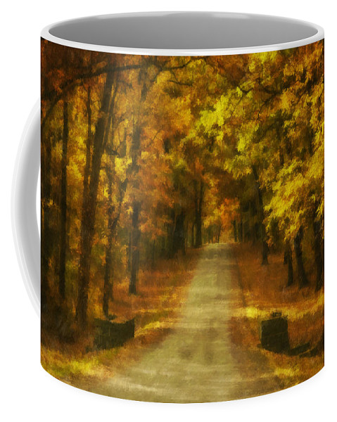 Autumn Coffee Mug featuring the photograph Autumn Road by Mick Burkey