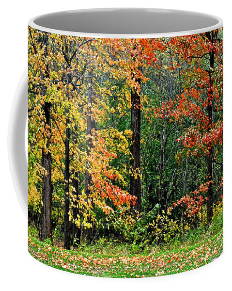 Autumn Coffee Mug featuring the photograph Autumn by Frozen in Time Fine Art Photography