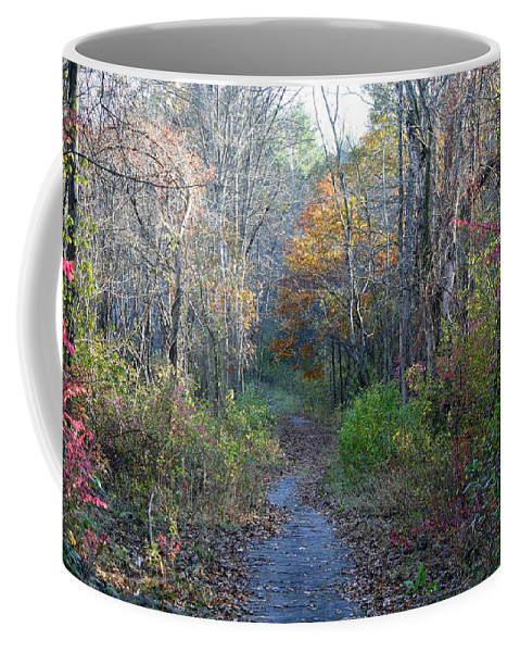 Photography Coffee Mug featuring the photograph Autumn Silence No.2 by Neal Eslinger