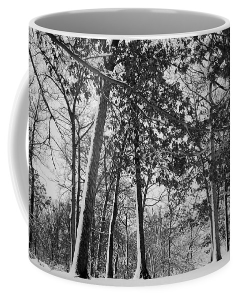 Autumn Coffee Mug featuring the photograph Autumn Snow by Frozen in Time Fine Art Photography