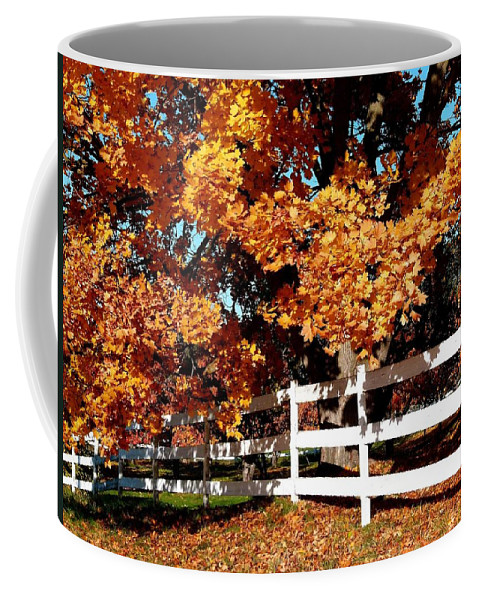 Autumn Splendor 10 Coffee Mug featuring the photograph Autumn Splendor 10 by Will Borden