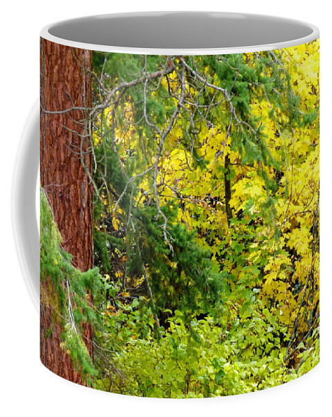Autumn Splendor 14 Coffee Mug featuring the photograph Autumn Splendor 14 by Will Borden