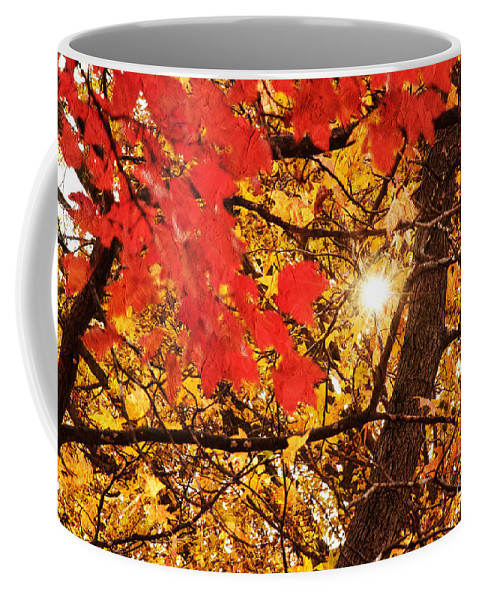 Autumn Photo Coffee Mug featuring the photograph Autumn Sunrise Painterly by Andee Design