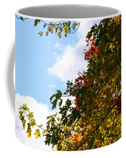 Minnesota Coffee Mug featuring the photograph Autumn To Perfection by Susan Herber
