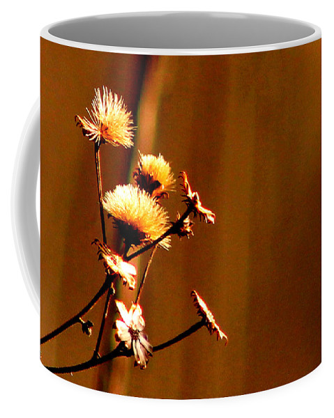 Nature Coffee Mug featuring the photograph Autumn's Moment by Bruce Patrick Smith
