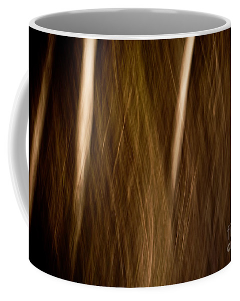 Art Coffee Mug featuring the photograph Autumn's Promise 14 by Joe Mamer