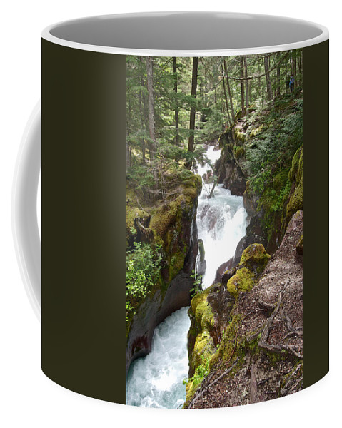 Avalanche Creek Cascades Coffee Mug featuring the photograph Avalanche Creek In Glacier Np-mt by Ruth Hager
