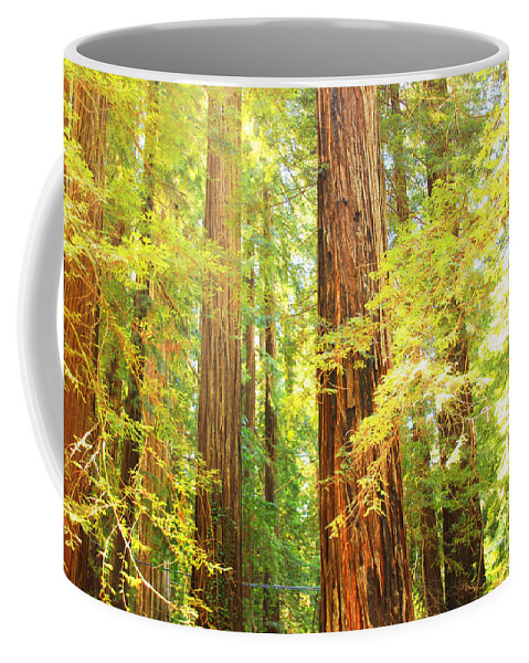 Redwoods Coffee Mug featuring the photograph Avenue Of The Giants by Kris Hiemstra