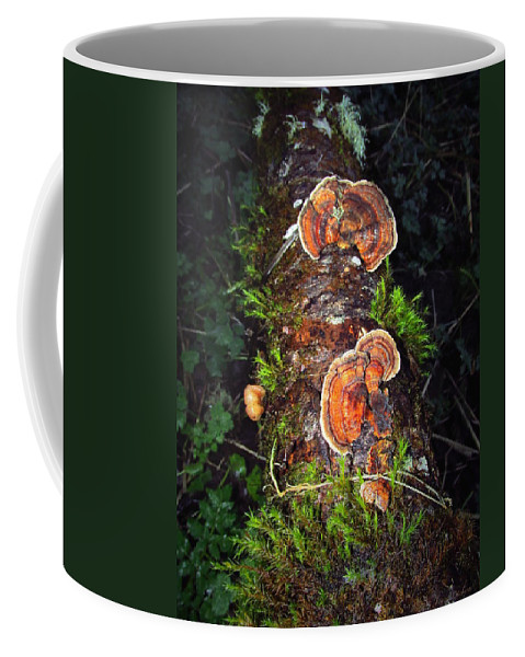 Mushroom Coffee Mug featuring the photograph Awe Inspiring Fungi by Joyce Dickens