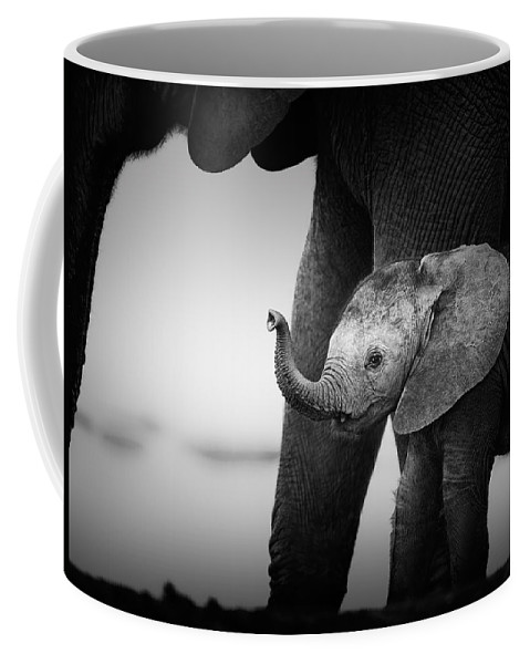 Elephant Coffee Mug featuring the photograph Baby Elephant next to Cow by Johan Swanepoel