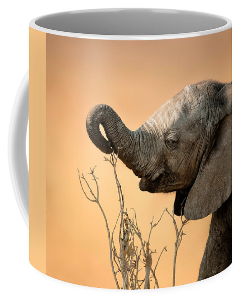 Elephant Coffee Mug featuring the photograph Baby elephant reaching for branch by Johan Swanepoel