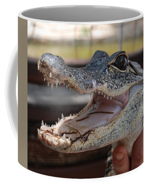 Macro Coffee Mug featuring the photograph Baby Gator by Rob Hans