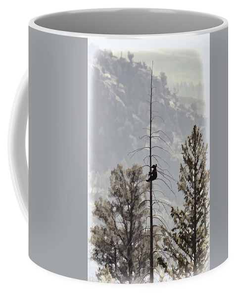 Baby Tree Hugger Coffee Mug featuring the photograph Baby Tree Hugger by Wes and Dotty Weber
