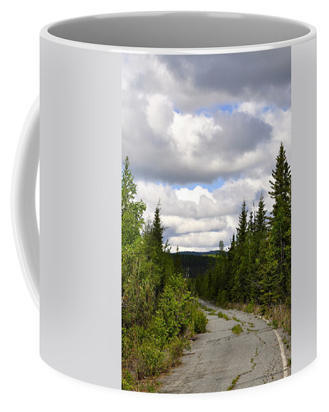 Road Coffee Mug featuring the photograph Back To Nature by Cathy Mahnke