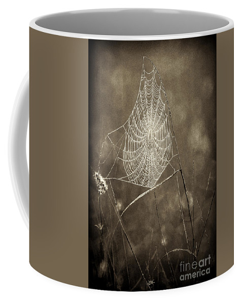 Wildlife Coffee Mug featuring the photograph Backlit Spider Web In Sepia Tones by Dave Welling