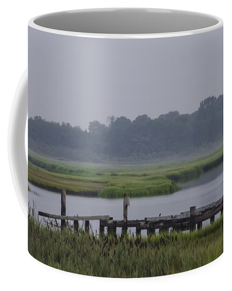 Backwater Coffee Mug featuring the photograph Backwater Bayau by Bill Cannon