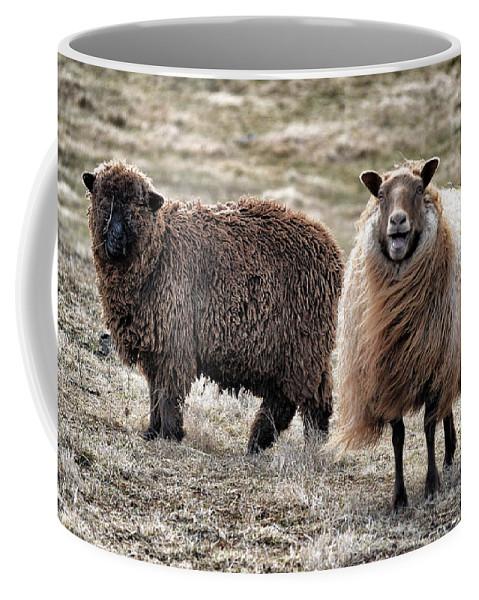 Animal Coffee Mug featuring the mixed media Bahahaha by Trish Tritz