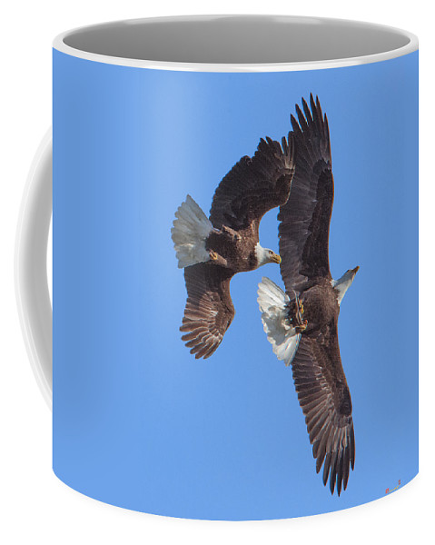 Marsh Coffee Mug featuring the photograph Bald Eagle Chase Over Pohick Bay Drb148 by Gerry Gantt