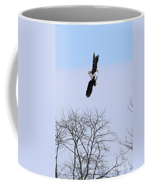 Bald Eagles Coffee Mug featuring the photograph Bald Eagle Courtship Ritual 1337 by Jack Schultz