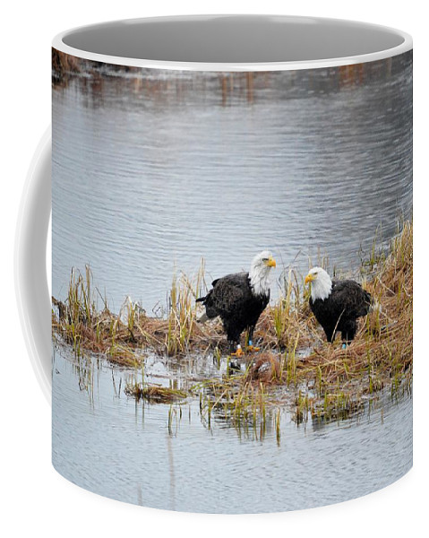 Bald Eagle Coffee Mug featuring the photograph Bald Eagle Pair by Thomas Phillips