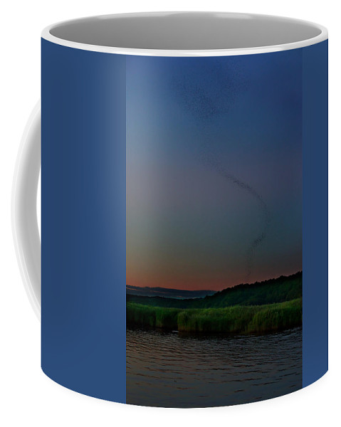 Birds Coffee Mug featuring the photograph Ballet Of The Tree Swallows by Jonathan Steele
