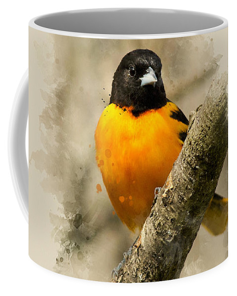 Baltimore Oriole Coffee Mug featuring the mixed media Baltimore Oriole Watercolor Art by Christina Rollo