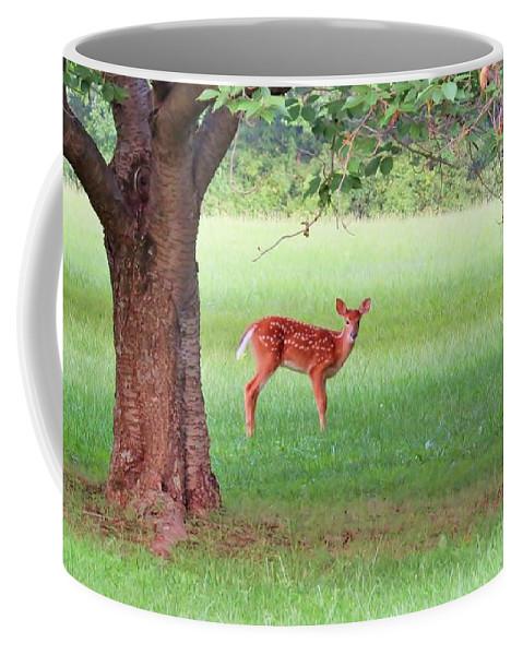 Bird Coffee Mug featuring the photograph Bambi Days by Art Dingo