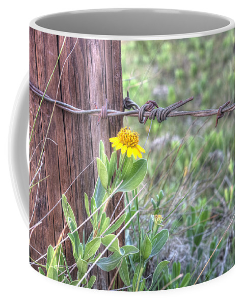 Flower Coffee Mug featuring the photograph Barbed Beauty by Scott Hansen