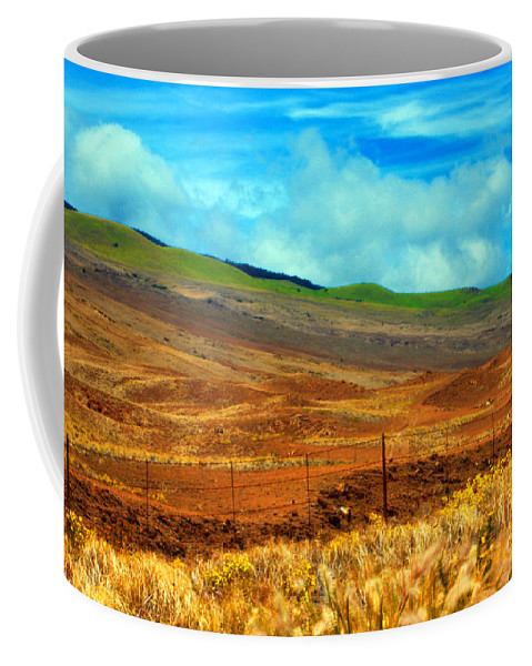 Barbed Wire Coffee Mug featuring the photograph Barbed Wire Fence by Paulette B Wright