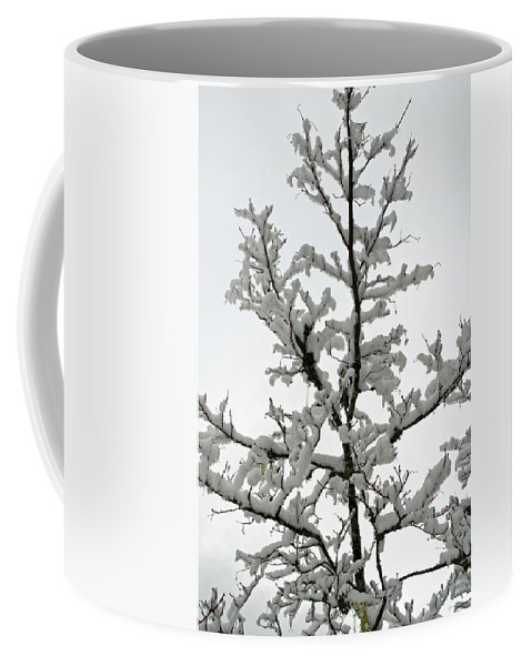 Bare Branches Coffee Mug featuring the photograph Bare Branches With Snow by Tikvah's Hope