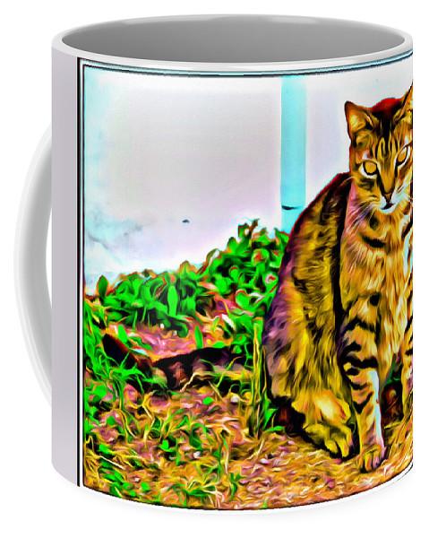 Cat Kitty Brown Tabby Coffee Mug featuring the photograph Barn Kitty by Alice Gipson