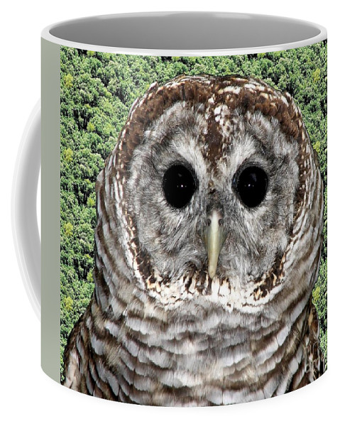 Barred Owl Coffee Mug featuring the photograph Barred Owl 1 by Rose Santuci-Sofranko