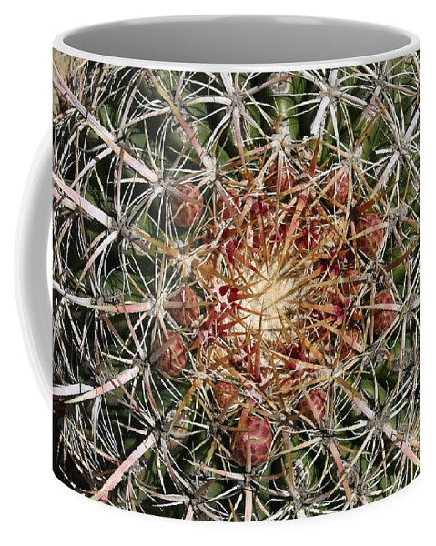 Barrel Cactus Coffee Mug featuring the photograph Barrel Cactus by Ellen Henneke