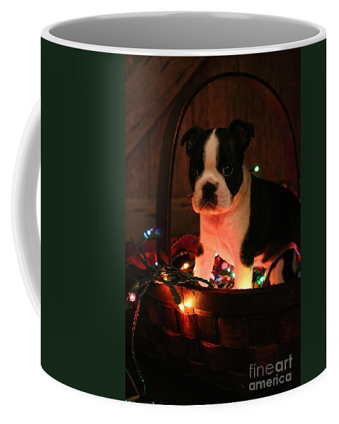 Animal Coffee Mug featuring the photograph Basket Baby by Susan Herber