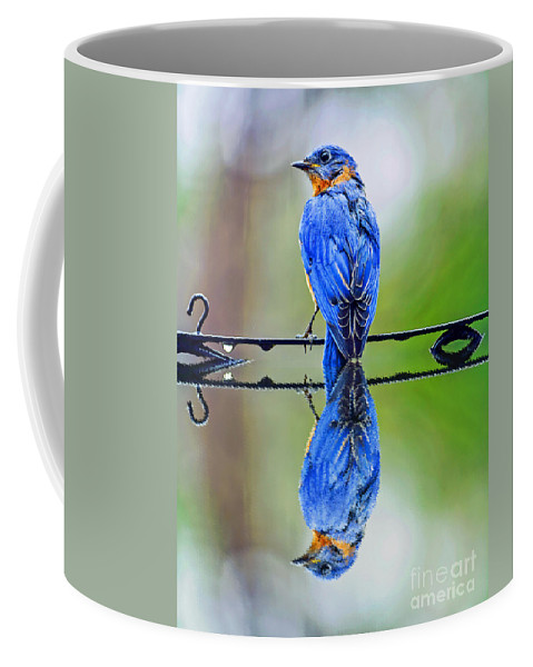 Reflection Coffee Mug featuring the photograph Bath Time Reflection by Elvis Vaughn