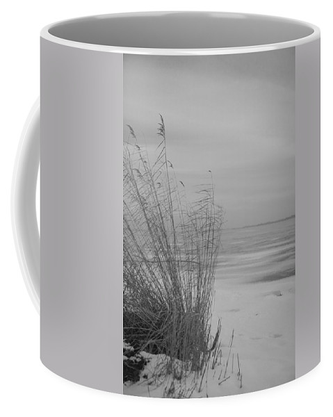 Island Of Ruegen Coffee Mug featuring the photograph Beach Grass In The Snow by Ralf Kaiser