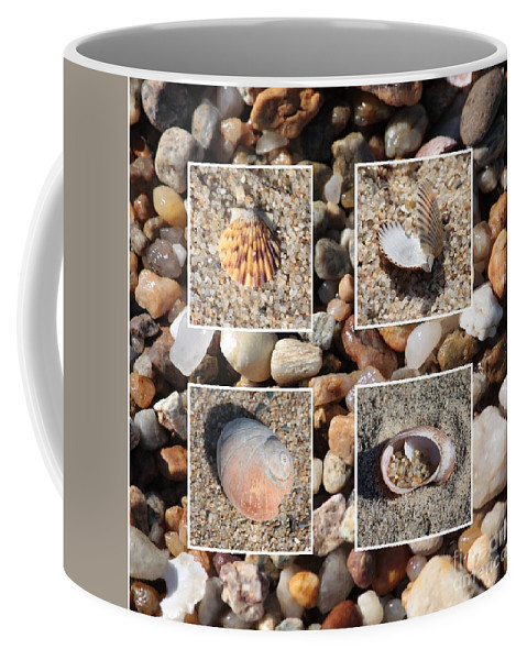 Shells Coffee Mug featuring the photograph Beach Shells And Rocks Collage by Carol Groenen