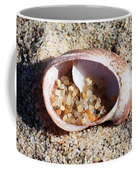 Shells Coffee Mug featuring the photograph Beach Treasure by Carol Groenen