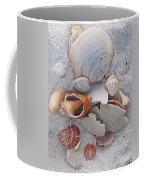 Shells Coffee Mug featuring the photograph Beach Treasures 2 by Megan Cohen