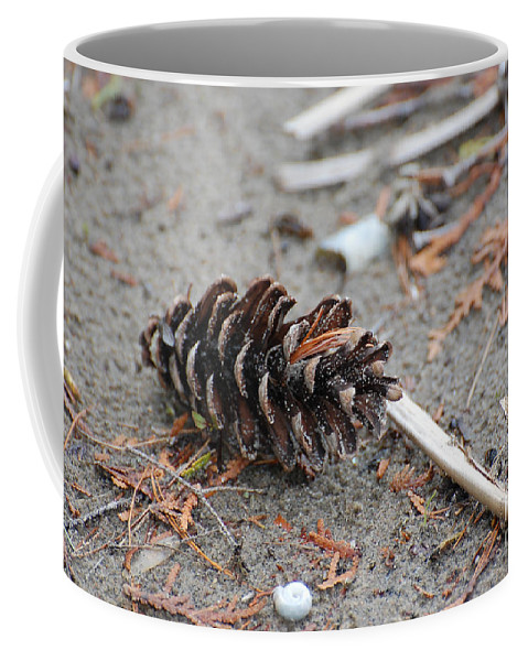 Nature Coffee Mug featuring the photograph Beach Treasures by Bianca Nadeau