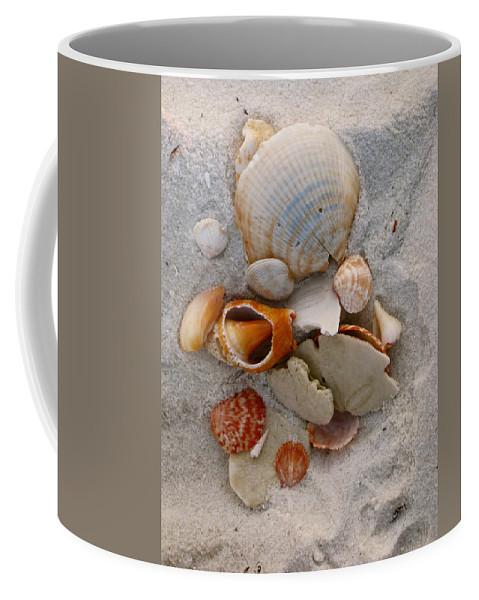 Shells Coffee Mug featuring the photograph Beach Treasures by Megan Cohen
